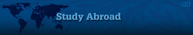 Study Abroad Banner